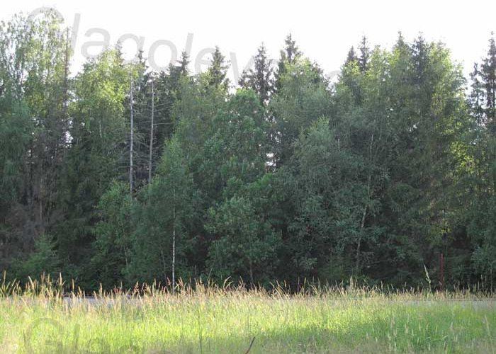 Земельный участок Глаголево парк
